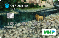 Дебетовая Социальная карта от банка Открытие